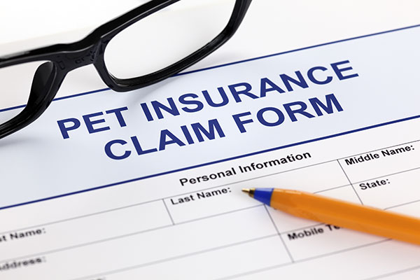 Golden Gate Pet Insurance