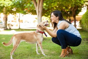 Top College Park Pet Sitting